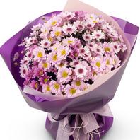 [플라워포유] 소국 연보라꽃다발 (RM_RBC2020) [꽃다발/결혼기념일/크리스마스/프로포즈/화이트데이/발렌타인데이]